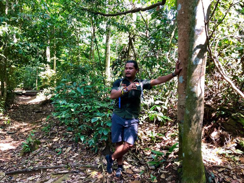 Discover_Sumatra_10