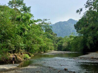 landak_river